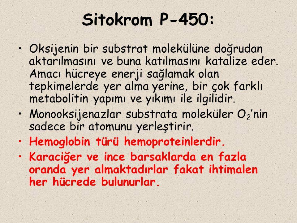 Sitokrom P-450: Oksijenin bir substrat molekülüne doğrudan aktarılmasını ve buna katılmasını katalize eder. Amacı hücreye enerji sağlamak olan tepkime