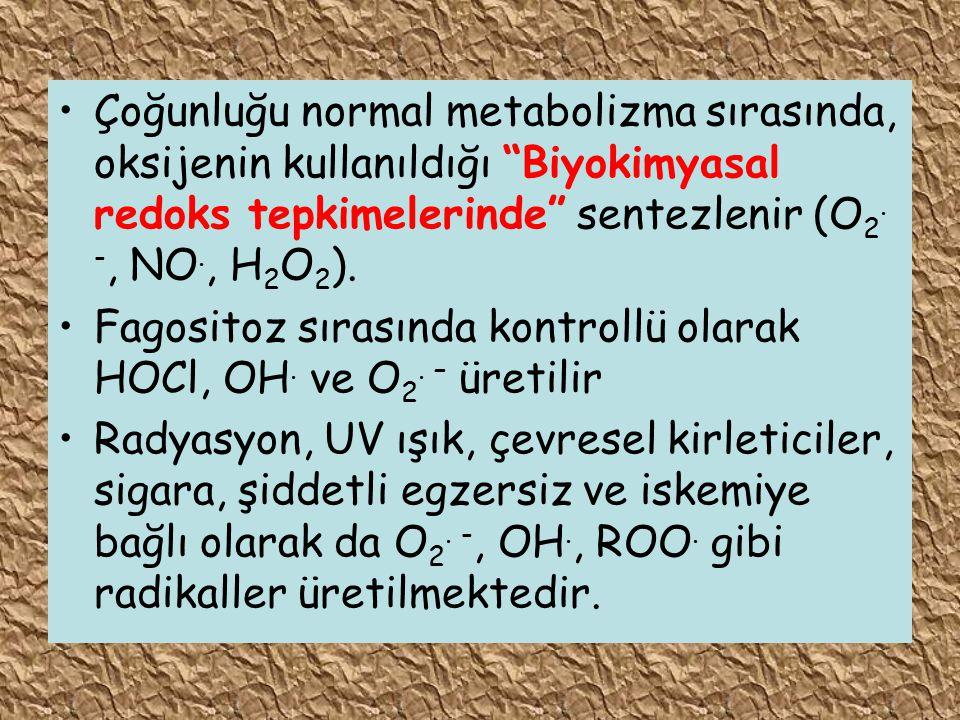 """Çoğunluğu normal metabolizma sırasında, oksijenin kullanıldığı """"Biyokimyasal redoks tepkimelerinde"""" sentezlenir (O 2. -, NO., H 2 O 2 ). Fagositoz sır"""