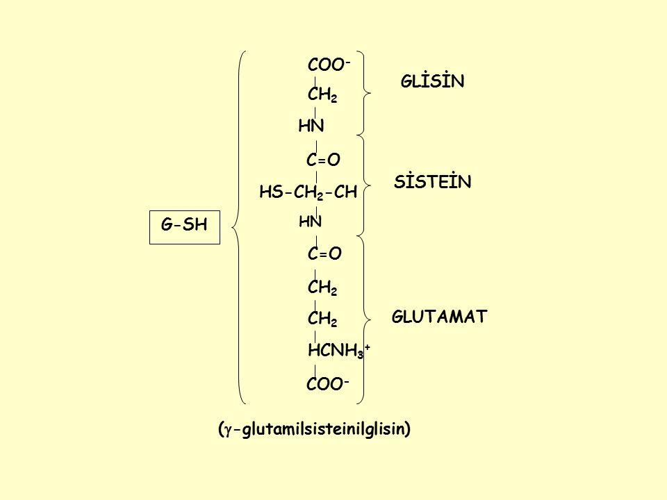 Fe +2 O2-O2- NADP + NADPH Fenton rxn Cl - H2O2H2O2 O2O2 HOCl OH - SOD Vit.E NADPH oksidaz O2-O2- O2-O2- O2-O2- Myeloperoksidaz H2O2H2O2 H2O2H2O2 Vit.E