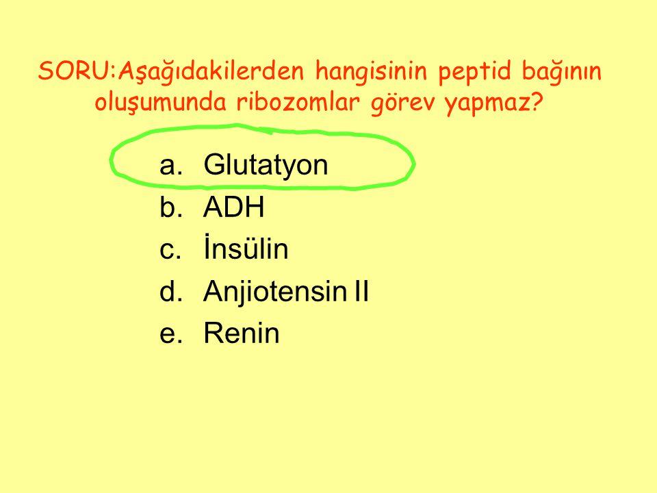 SORU:Aşağıdakilerden hangisinin peptid bağının oluşumunda ribozomlar görev yapmaz? a.Glutatyon b.ADH c.İnsülin d.Anjiotensin II e.Renin