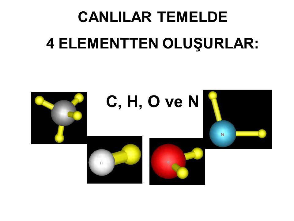 CANLILAR TEMELDE 4 ELEMENTTEN OLUŞURLAR: C, H, O ve N C