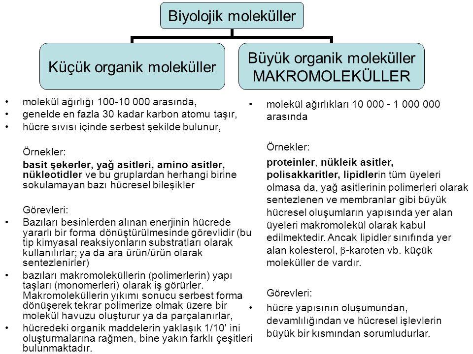 Toplam hücre ağırlığının yüzdesiMolekül çeşidi Su701 İnorganik iyonlar120 Şekerler ve öncü maddeleri1250 Amino asitler ve öncü maddeleri 0,4100 Nükleotidler ve öncü maddeleri 0,4100 Yağ asitleri ve öncü maddeleri150 Diğer küçük moleküller0,2~300 Makromoleküller26~3000 Tablo 1.