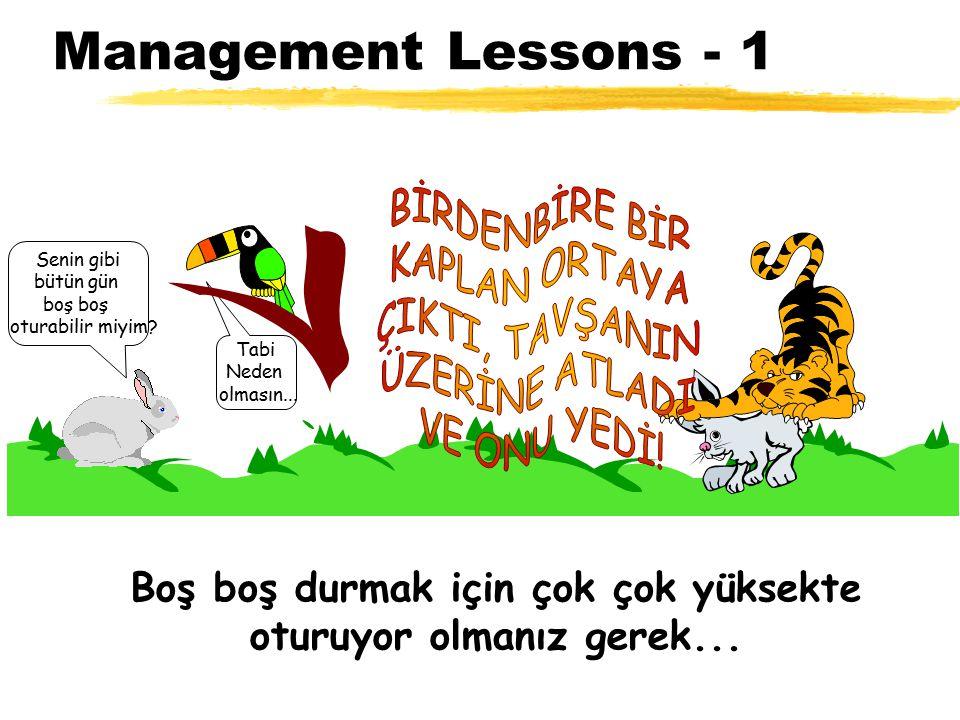 Management Lessons - 1 Tabi Neden olmasın... Senin gibi bütün gün boş oturabilir miyim? Boş boş durmak için çok çok yüksekte oturuyor olmanız gerek...