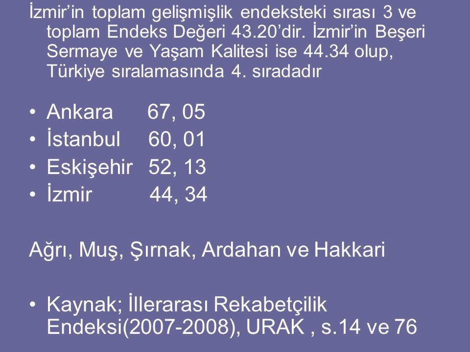 İzmir'in toplam gelişmişlik endeksteki sırası 3 ve toplam Endeks Değeri 43.20'dir.