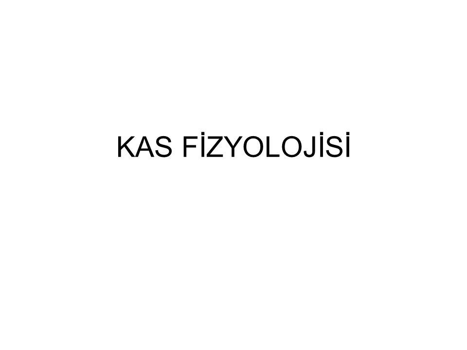 KAS FİZYOLOJİSİ