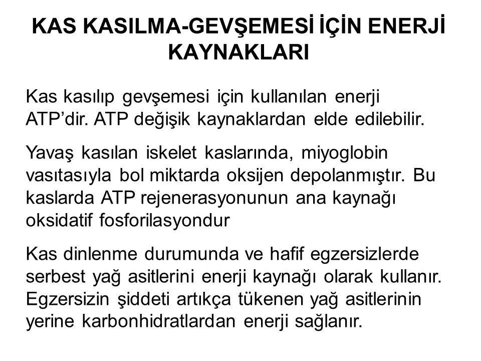 KAS KASILMA-GEVŞEMESİ İÇİN ENERJİ KAYNAKLARI Kas kasılıp gevşemesi için kullanılan enerji ATP'dir. ATP değişik kaynaklardan elde edilebilir. Yavaş kas
