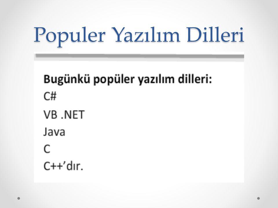 Populer Yazılım Dilleri