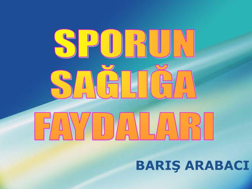 BARIŞ ARABACI
