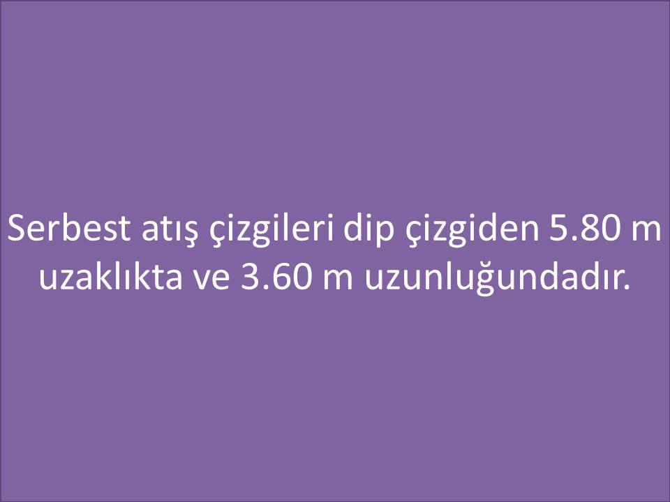Serbest atış çizgileri dip çizgiden 5.80 m uzaklıkta ve 3.60 m uzunluğundadır.