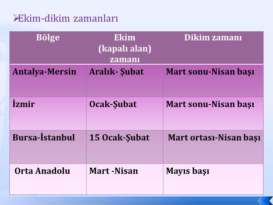 BölgeEkim (kapalı alan) zamanı Dikim zamanı Antalya-MersinAralık- ŞubatMart sonu-Nisan başı İzmirOcak-ŞubatMart sonu-Nisan başı Bursa-İstanbul15 Ocak-