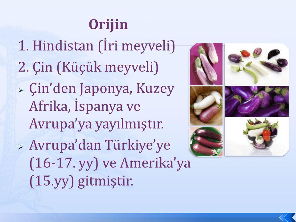 Sınıflandırma Sınıflandırma  Familya : Solanaceae  Cins : Solanum  Tür : Solanum melongena Solanum melongena var.