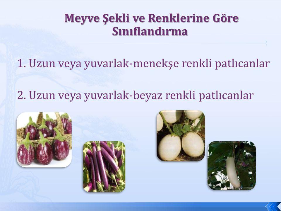 Meyve Şekli ve Renklerine Göre Sınıflandırma Meyve Şekli ve Renklerine Göre Sınıflandırma 1. Uzun veya yuvarlak-menekşe renkli patlıcanlar 2. Uzun vey