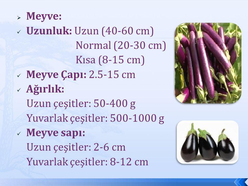  Meyve: Uzunluk: Uzun (40-60 cm) Normal (20-30 cm) Kısa (8-15 cm) Meyve Çapı: 2.5-15 cm Ağırlık: Uzun çeşitler: 50-400 g Yuvarlak çeşitler: 500-1000