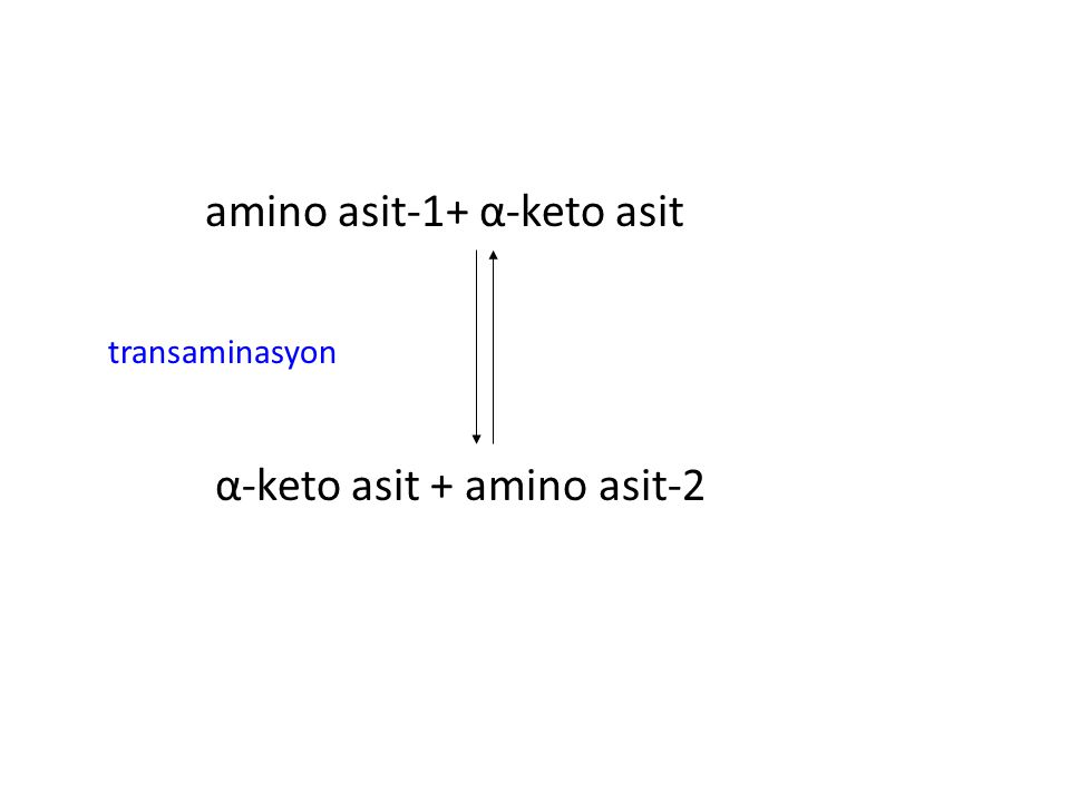 amino asit-1+ α-keto asit transaminasyon α-keto asit + amino asit-2