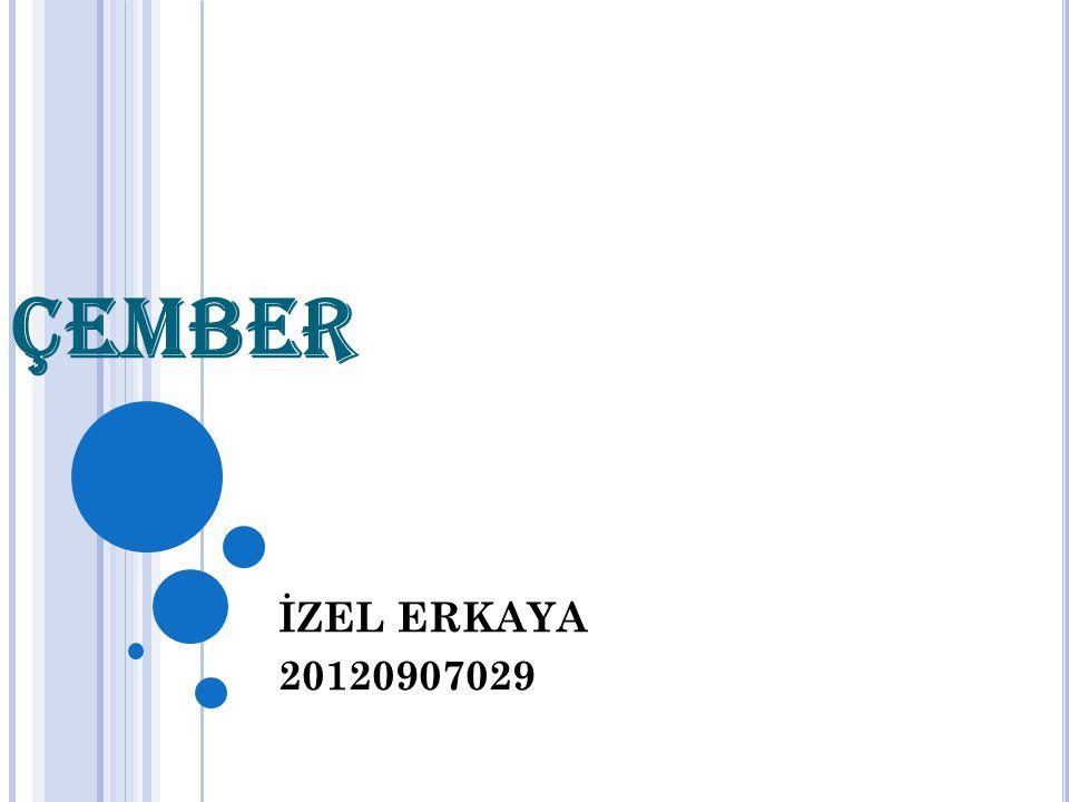 ÇEMBER İZEL ERKAYA 20120907029
