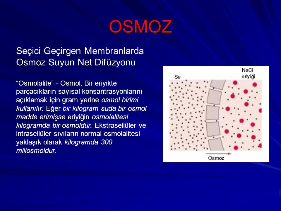 OSMOZ Seçici Geçirgen Membranlarda Osmoz Suyun Net Difüzyonu Osmolalite - Osmol.
