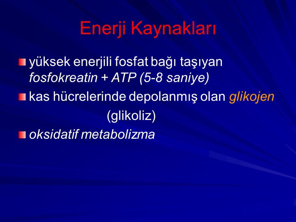 Enerji Kaynakları yüksek enerjili fosfat bağı taşıyan fosfokreatin + ATP (5-8 saniye) kas hücrelerinde depolanmış olan glikojen (glikoliz) oksidatif metabolizma