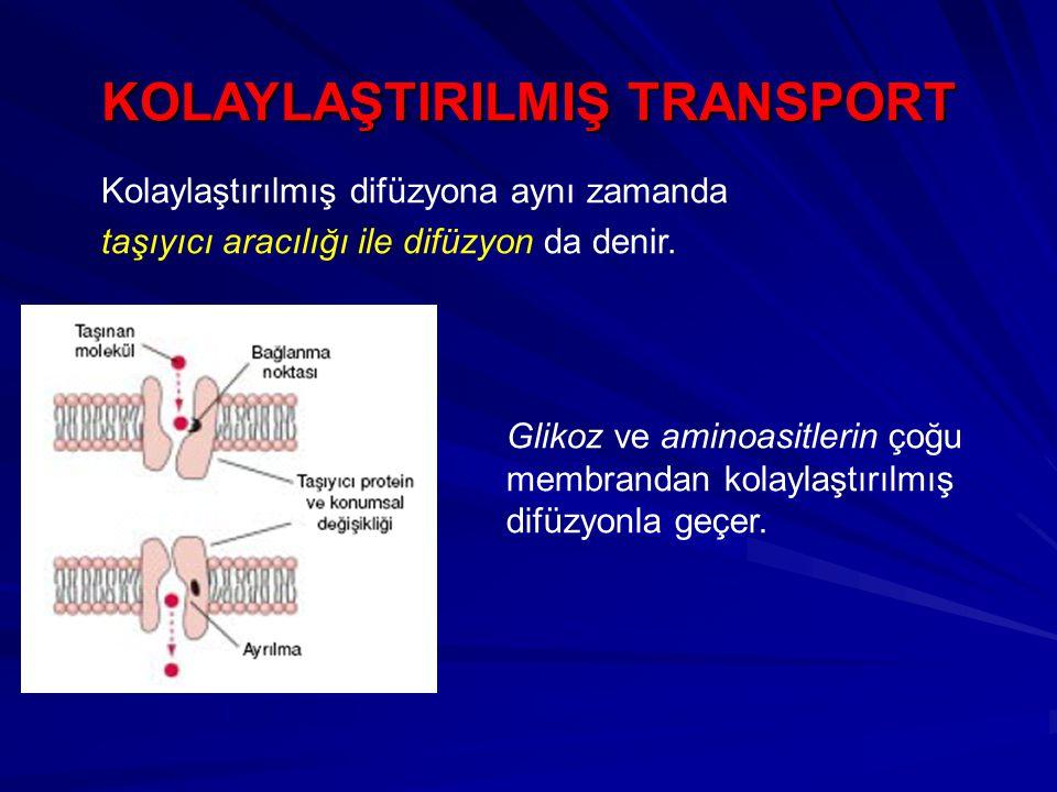 KOLAYLAŞTlRILMIŞ TRANSPORT Kolaylaştırılmış difüzyona aynı zamanda taşıyıcı aracılığı ile difüzyon da denir.