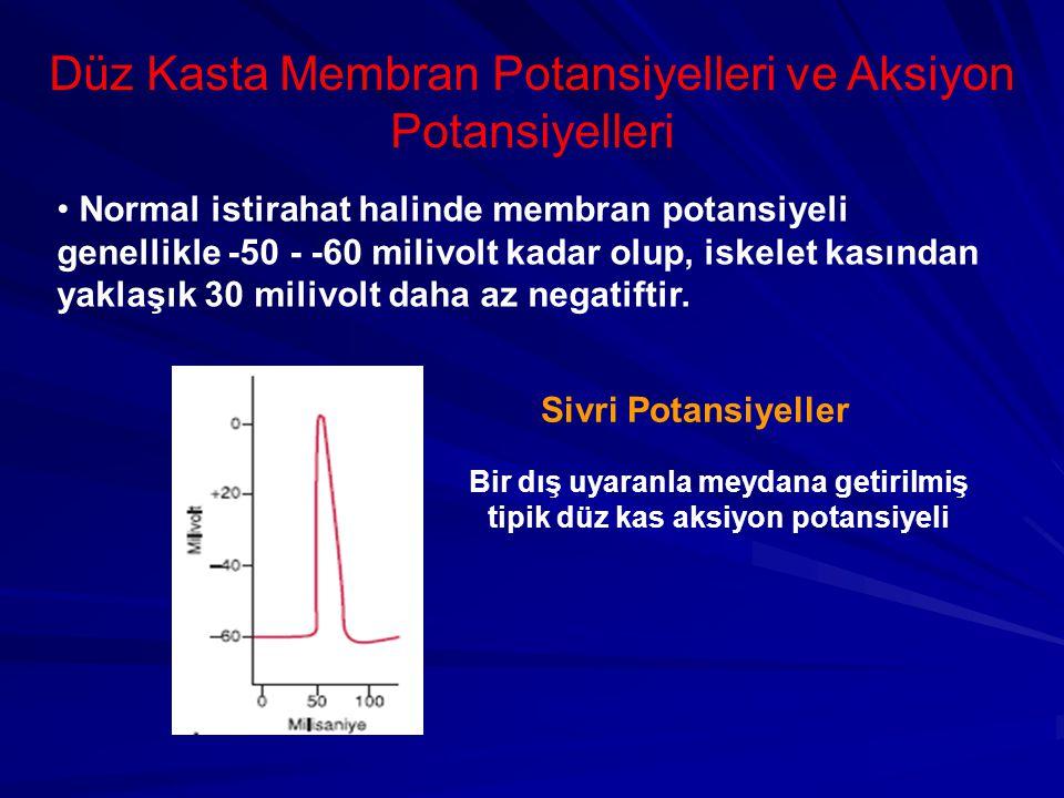 Düz Kasta Membran Potansiyelleri ve Aksiyon Potansiyelleri Normal istirahat halinde membran potansiyeli genellikle -50 - -60 milivolt kadar olup, iskelet kasından yaklaşık 30 milivolt daha az negatiftir.