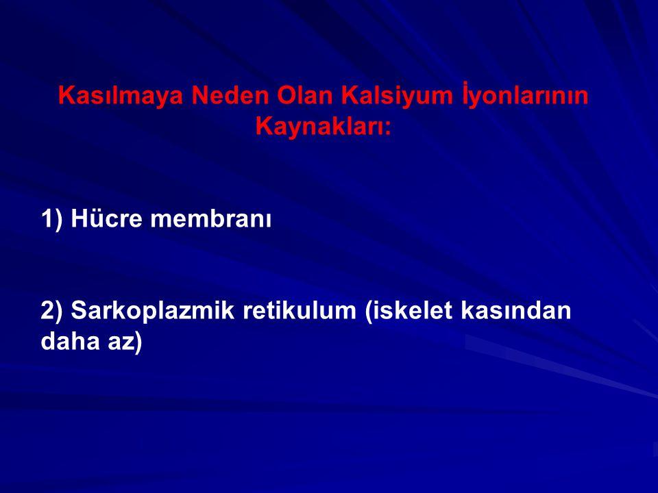 Kasılmaya Neden Olan Kalsiyum İyonlarının Kaynakları: 1) Hücre membranı 2) Sarkoplazmik retikulum (iskelet kasından daha az)