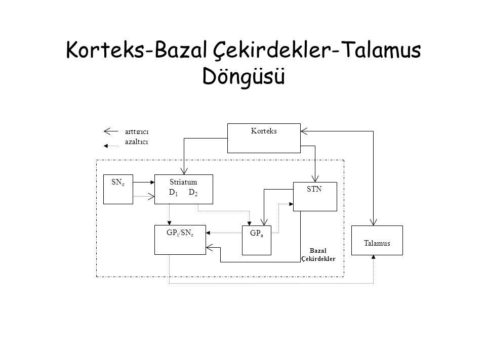 Korteks-Bazal Çekirdekler-Talamus Döngüsü Korteks Striatum D 1 D 2 SN c GP i /SN r GP e STN Talamus Bazal Çekirdekler arttırıcı azaltıcı