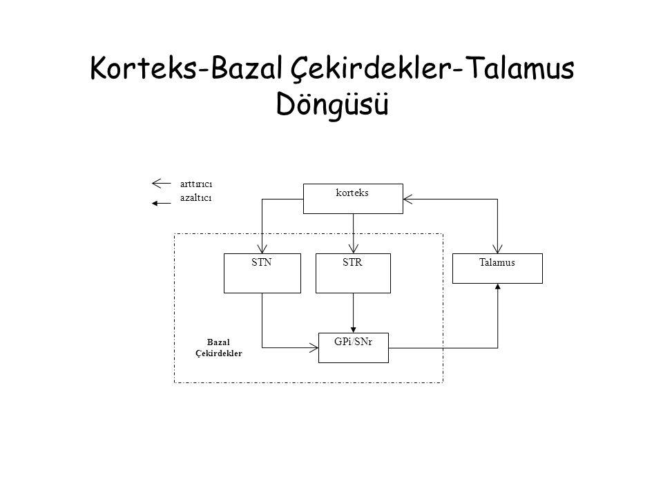 Korteks-Bazal Çekirdekler-Talamus Döngüsü korteks Talamus GPi/SNr STRSTN Bazal Çekirdekler arttırıcı azaltıcı