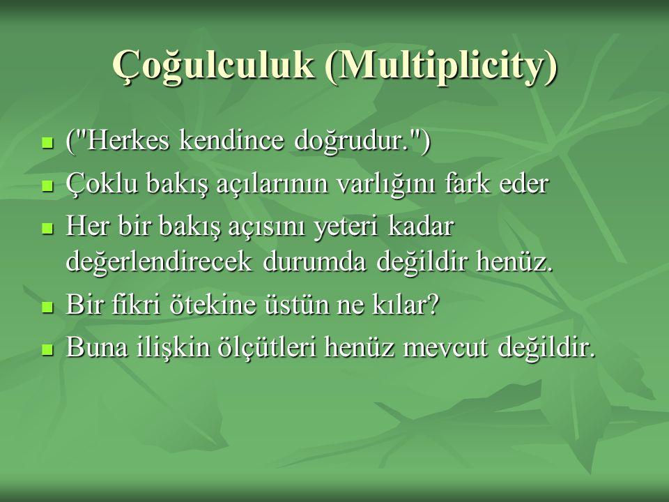 Çoğulculuk (Multiplicity) (