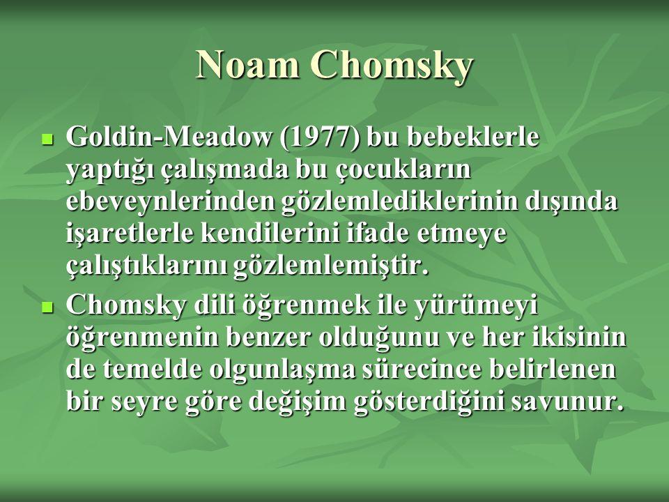 Noam Chomsky Goldin-Meadow (1977) bu bebeklerle yaptığı çalışmada bu çocukların ebeveynlerinden gözlemlediklerinin dışında işaretlerle kendilerini ifade etmeye çalıştıklarını gözlemlemiştir.