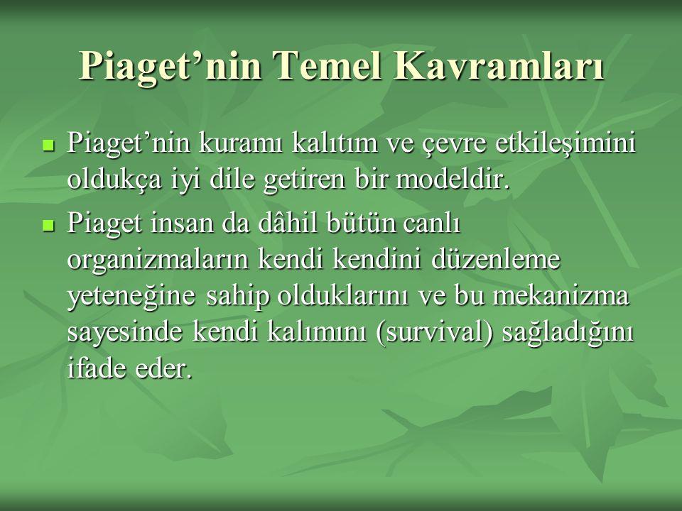 Piaget'nin Temel Kavramları Piaget'nin kuramı kalıtım ve çevre etkileşimini oldukça iyi dile getiren bir modeldir.