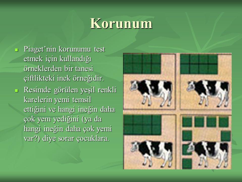 Korunum Piaget'nin korunumu test etmek için kullandığı örneklerden bir tanesi çiftlikteki inek örneğidir. Piaget'nin korunumu test etmek için kullandı