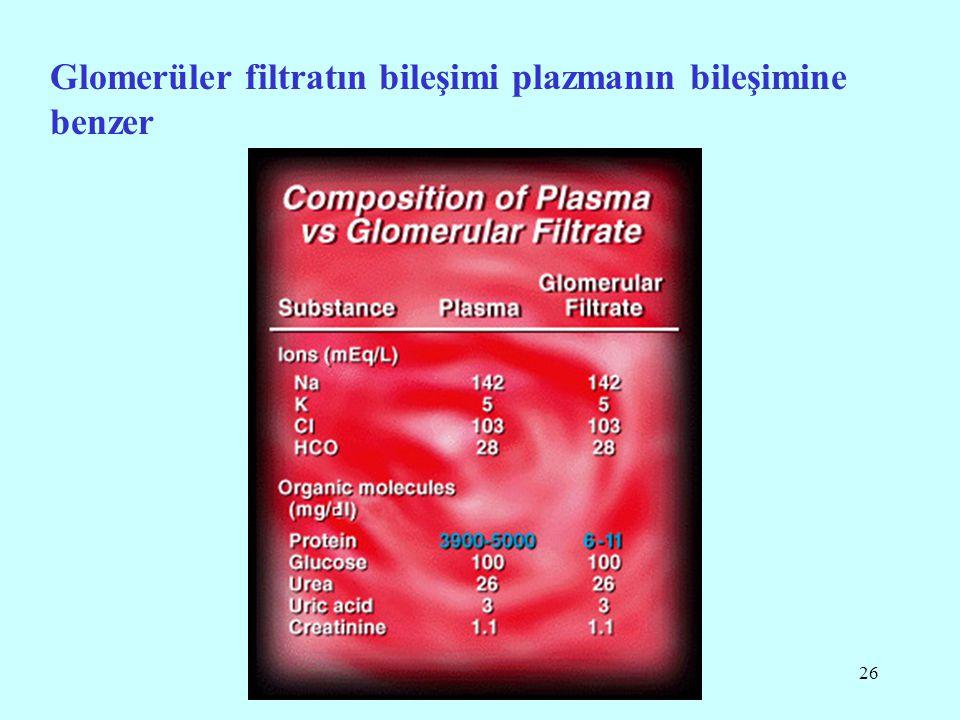 26 Glomerüler filtratın bileşimi plazmanın bileşimine benzer