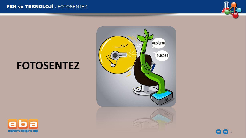 FEN ve TEKNOLOJİ / FOTOSENTEZ FOTOSENTEZ 1