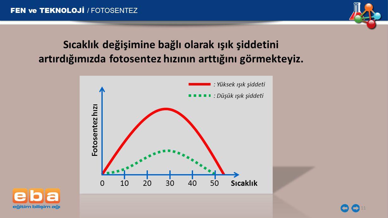 FEN ve TEKNOLOJİ / FOTOSENTEZ 11 Sıcaklık değişimine bağlı olarak ışık şiddetini artırdığımızda fotosentez hızının arttığını görmekteyiz.