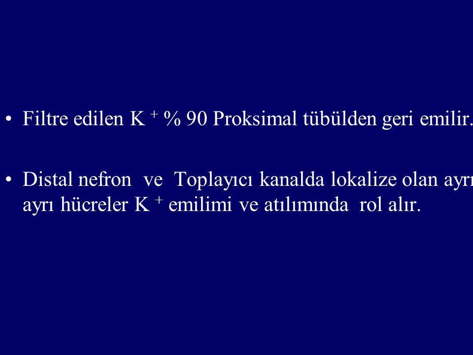 Filtre edilen K + % 90 Proksimal tübülden geri emilir.