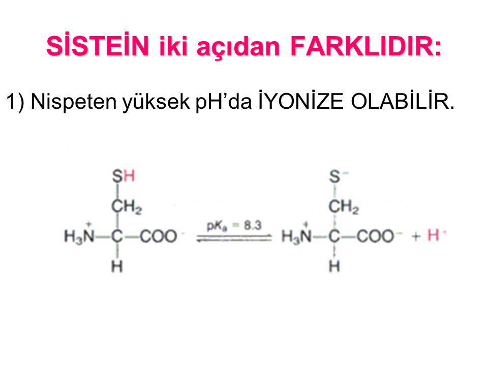 SİSTEİN iki açıdan FARKLIDIR: 1) Nispeten yüksek pH'da İYONİZE OLABİLİR.