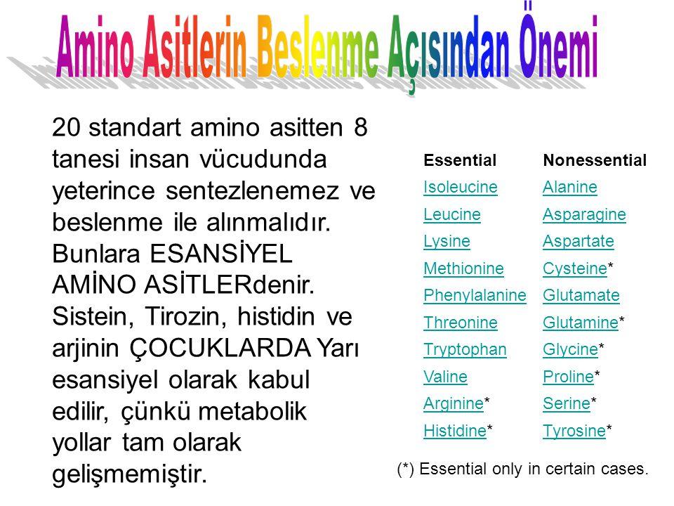 EssentialNonessential IsoleucineAlanine LeucineAsparagine LysineAspartate MethionineCysteineCysteine* PhenylalanineGlutamate ThreonineGlutamineGlutami