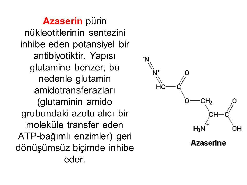 Azaserin pürin nükleotitlerinin sentezini inhibe eden potansiyel bir antibiyotiktir. Yapısı glutamine benzer, bu nedenle glutamin amidotransferazları