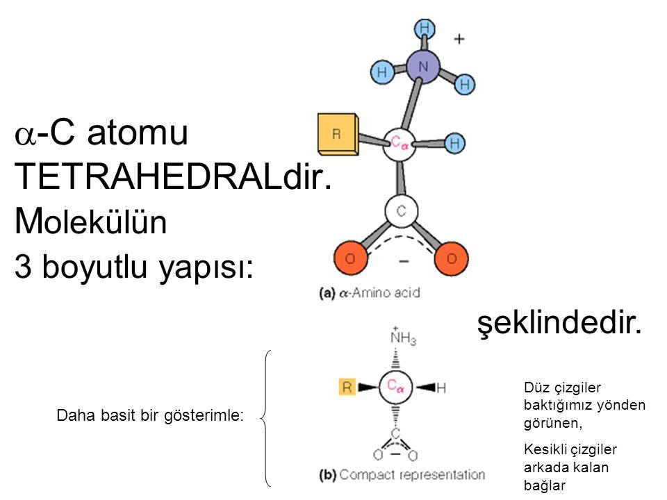  -C atomu TETRAHEDRALdir. M olekülün 3 boyutlu yapısı: şeklindedir. Daha basit bir gösterimle: Düz çizgiler baktığımız yönden görünen, Kesikli çizgil