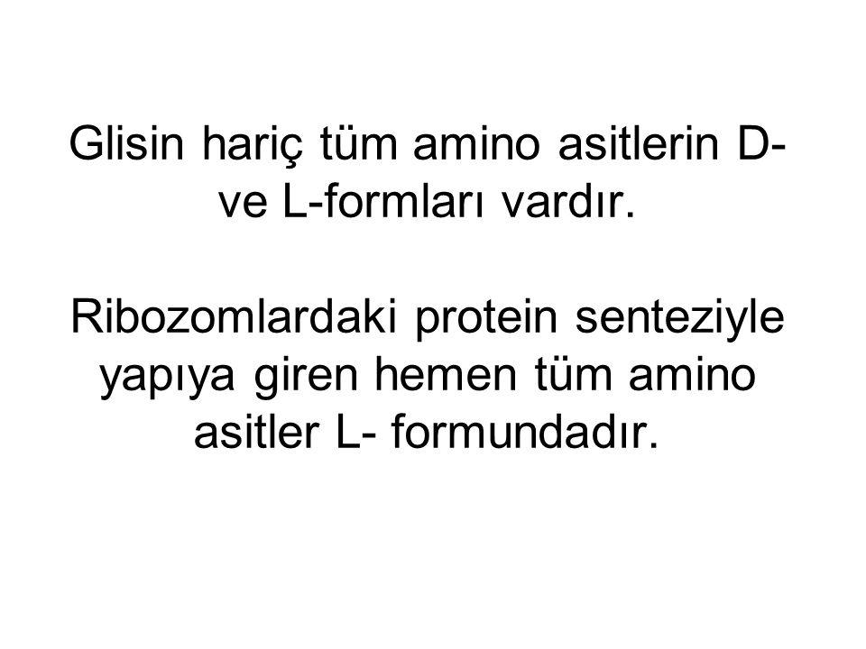 Glisin hariç tüm amino asitlerin D- ve L-formları vardır. Ribozomlardaki protein senteziyle yapıya giren hemen tüm amino asitler L- formundadır.