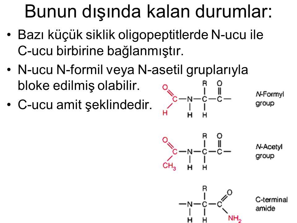 Bunun dışında kalan durumlar: Bazı küçük siklik oligopeptitlerde N-ucu ile C-ucu birbirine bağlanmıştır. N-ucu N-formil veya N-asetil gruplarıyla blok