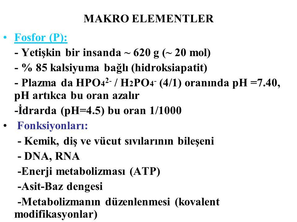 MAKRO ELEMENTLER Fosfor (P): - Yetişkin bir insanda ~ 620 g (~ 20 mol) - % 85 kalsiyuma bağlı (hidroksiapatit) - Plazma da HPO 4 2- / H 2 PO 4 - (4/1)