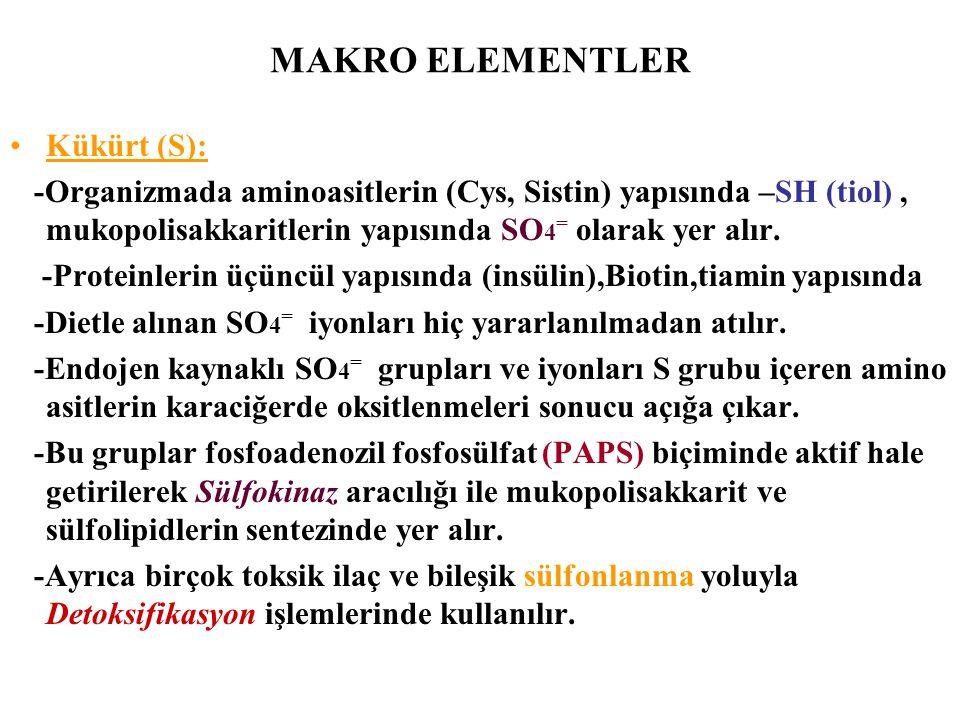MAKRO ELEMENTLER Kükürt (S): -Organizmada aminoasitlerin (Cys, Sistin) yapısında –SH (tiol), mukopolisakkaritlerin yapısında SO 4 = olarak yer alır. -