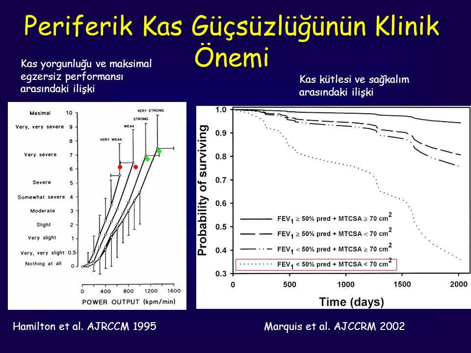 Hamilton et al. AJRCCM 1995 Kas Kas yorgunluğu ve maksimal egzersiz performansı arasındaki ilişki Periferik Kas Güçsüzlüğünün Klinik Önemi Marquis et
