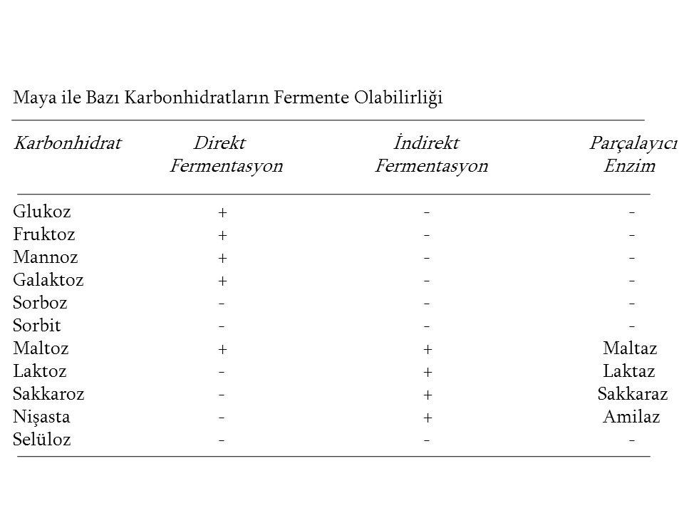 Maya ile Bazı Karbonhidratların Fermente Olabilirliği Karbonhidrat Direkt İndirekt Parçalayıcı Fermentasyon Fermentasyon Enzim Glukoz+-- Fruktoz+-- Ma