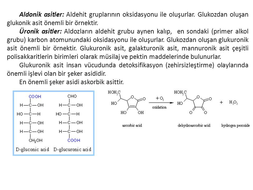 Aldonik asitler: Aldehit gruplarının oksidasyonu ile oluşurlar. Glukozdan oluşan glukonik asit önemli bir örnektir. Üronik asitler: Aldozların aldehit