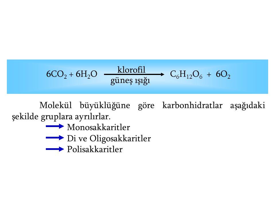 6CO 2 + 6H 2 O C 6 H 12 O 6 + 6O 2 klorofil güneş ışığı Molekül büyüklüğüne göre karbonhidratlar aşağıdaki şekilde gruplara ayrılırlar. Monosakkaritle