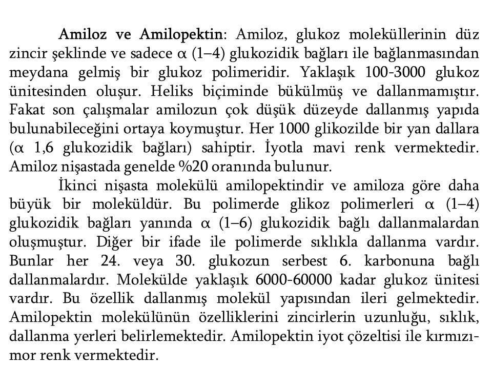 Amiloz ve Amilopektin: Amiloz, glukoz moleküllerinin düz zincir şeklinde ve sadece α (1–4) glukozidik bağları ile bağlanmasından meydana gelmiş bir gl