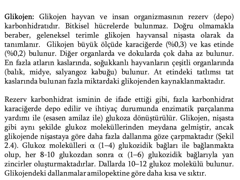 Glikojen: Glikojen hayvan ve insan organizmasının rezerv (depo) karbonhidratıdır. Bitkisel hücrelerde bulunmaz. Doğru olmamakla beraber, geleneksel te