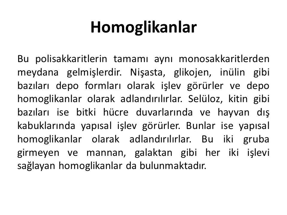 Homoglikanlar Bu polisakkaritlerin tamamı aynı monosakkaritlerden meydana gelmişlerdir. Nişasta, glikojen, inülin gibi bazıları depo formları olarak i