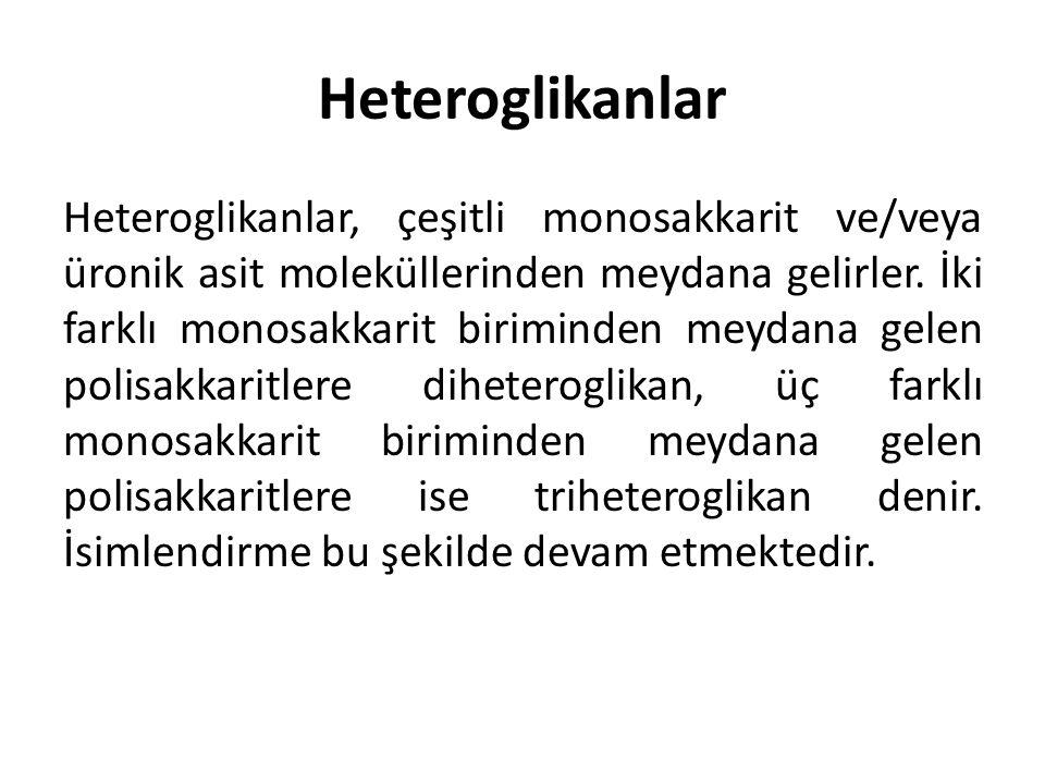 Heteroglikanlar Heteroglikanlar, çeşitli monosakkarit ve/veya üronik asit moleküllerinden meydana gelirler. İki farklı monosakkarit biriminden meydana